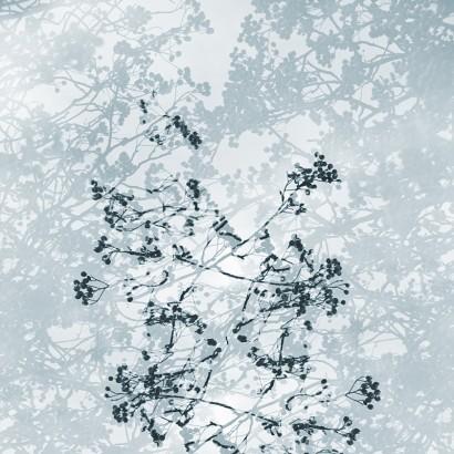 Natürlich-abstrakt-14.jpg