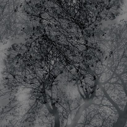 Natürlich-abstrakt-15.jpg