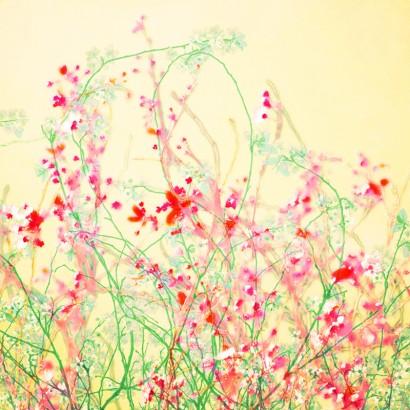 Blütenrausch-16.jpg