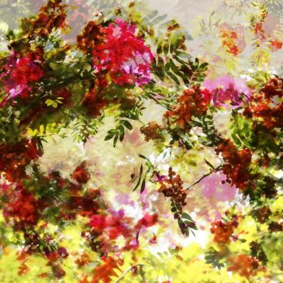 Blütenrausch-24.jpg